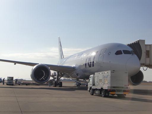 B787-8@岡山空港.JPG