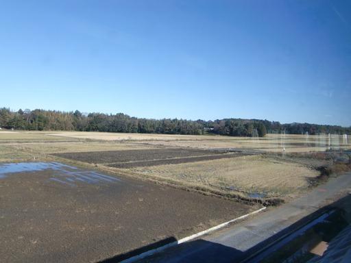 のどかな田園風景.JPG