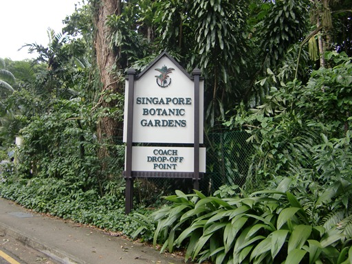 シンガポール植物園.JPG