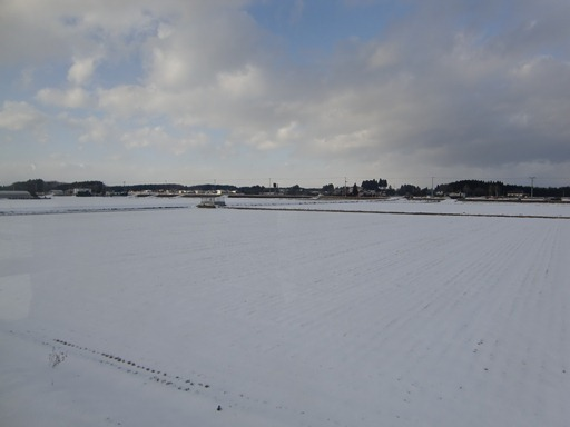 雪原をゆっくりと.JPG